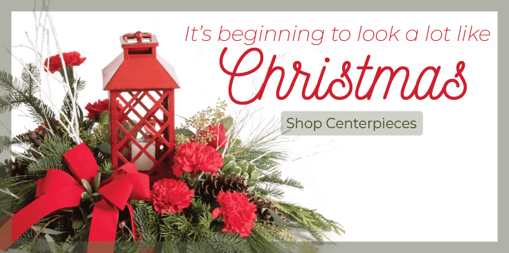 Shop Christmas Centerpieces