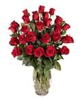2 Dozen Premium Longstem Roses