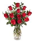 Classic 1 Dozen Medium Stem Red Roses