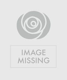 Make a beautiful and lasting impression!