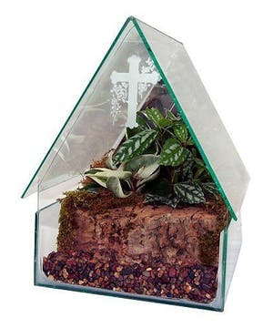 Church Terrarium