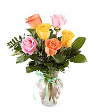 6 Rainbow Roses