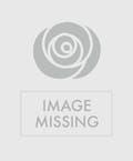 Festive Hand-Tied Bouquet
