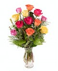 Radiant Rainbow Roses
