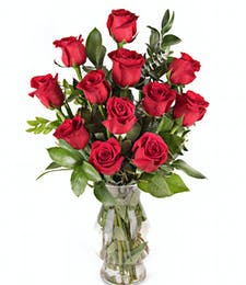 Classic 1 Dozen Medium Stem Red Roses