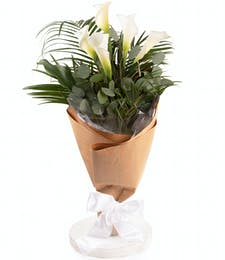 Calla Lily Hand-Tied Bouquet